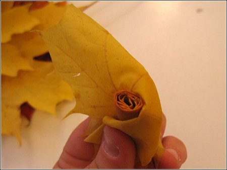 http://lh6.ggpht.com/_q6EEIoA3F3c/SpGIbxVtsPI/AAAAAAAAABw/bW9poTYfq8g/s512/art-origami-rose-from-mapple-leaf-06.jpg