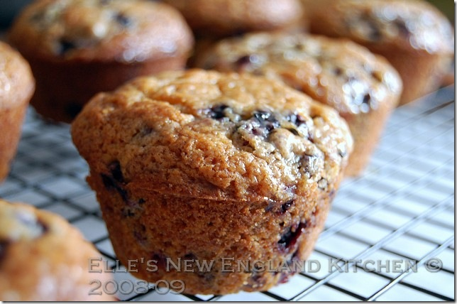 browned-butter-blueberry-muffins-3