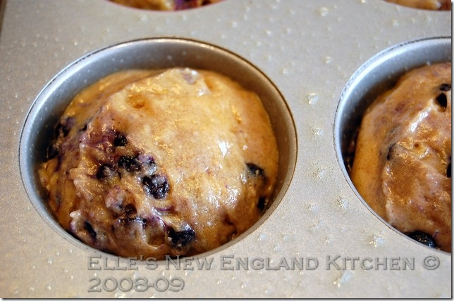 browned-butter-blueberry-muffins