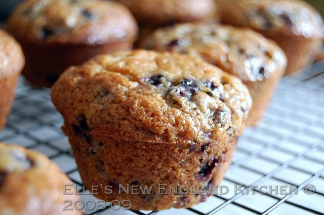 [browned-butter-blueberry-muffins-3[6].jpg]