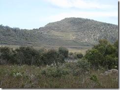 IMG_2960 Arthurs Peak