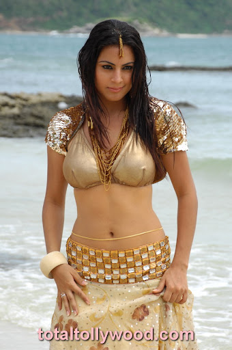 Hot Tamiltelugumalayalamhindiactresscinema Actresshot Photos Albums Cinema Portalhollywood