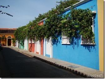 110427 Cartagena (6)
