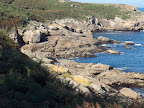 Punta Coitelada