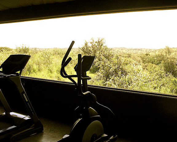 Singita Faru Faru Lodge Gym - What a View!