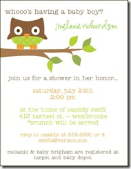 SAMP babyshower greenowl