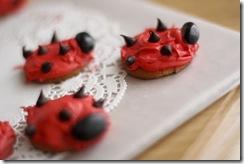 ladybugparty3