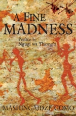 A Fine Madness by Mashingaidze Gomo