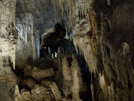 Aranui koopad