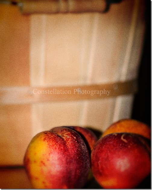 harvestnectarines