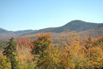 色付いた山々