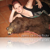 bear vs sexy dress