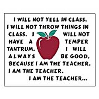I_Am_The_Teacher_funny_education_photographs