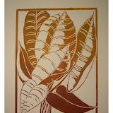 « Salagon » gravure/bois plante du conservatoire de (F04) Salagon 24×30cm 50€