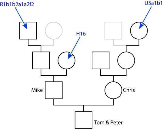 [haplogroup[5].png]