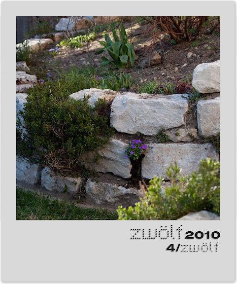 4-zwoelf2010-polaroid.jpg