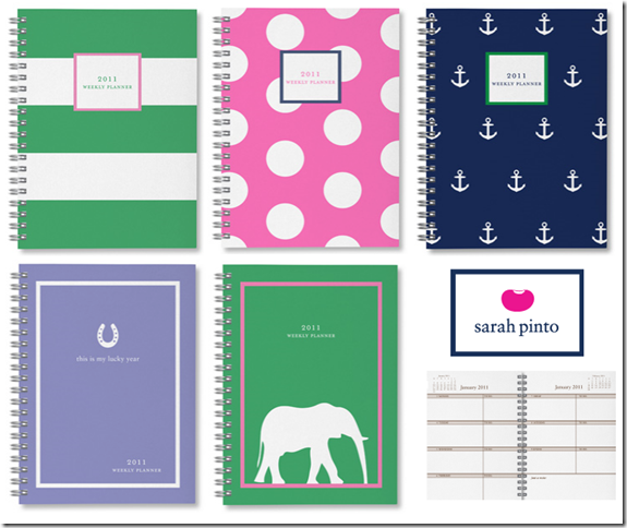 planner 2010 Pinto2