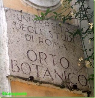 targa orto botanico roma