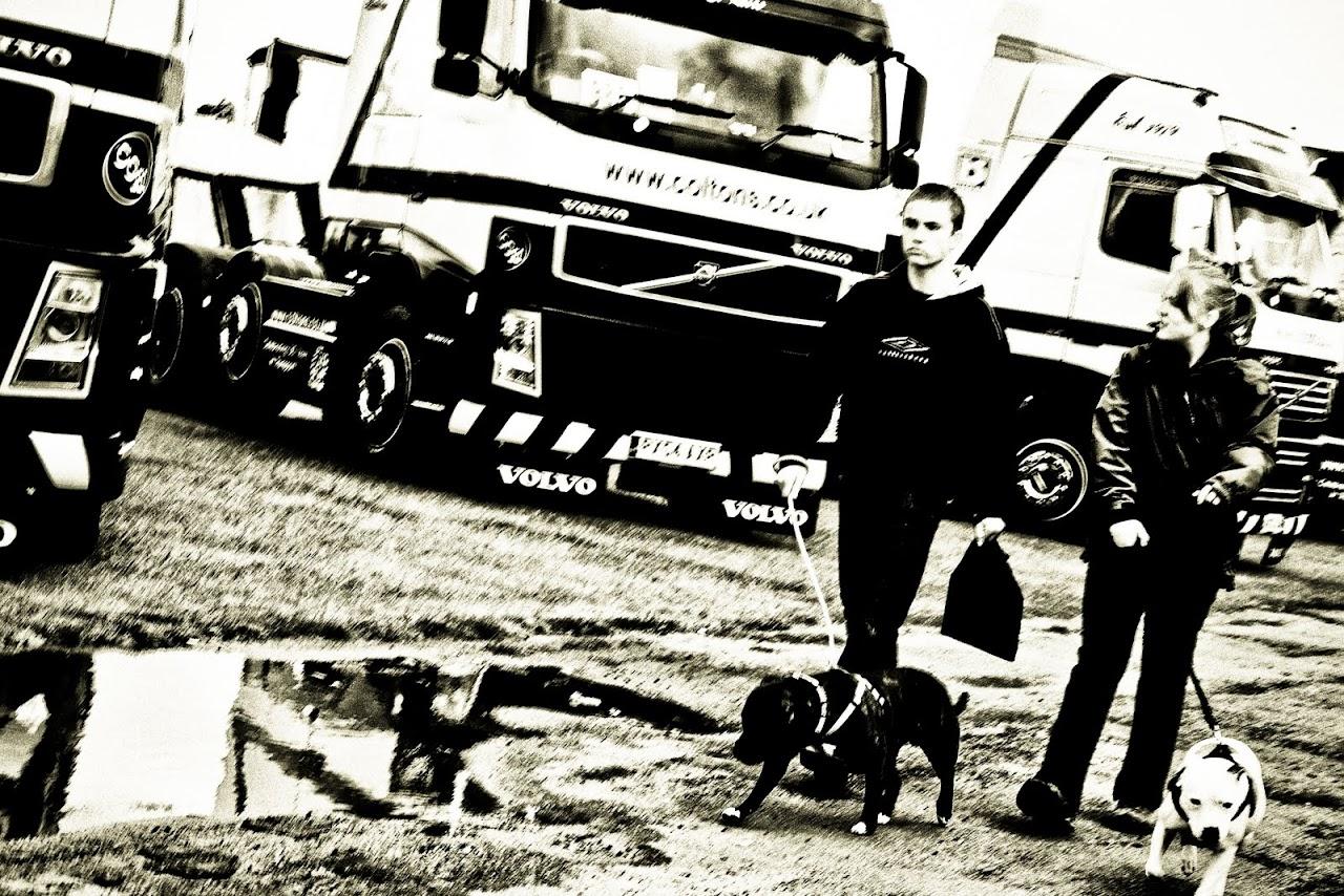 NC at Truckfest 2010 - A dog's life - 91_grrrooowwl