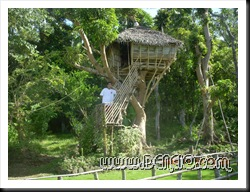 Pose sa treehouse..