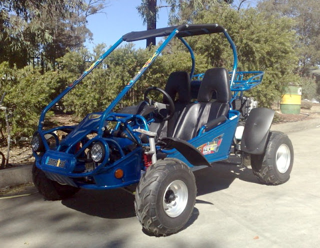 250 GT Hammerhead Twister Buggy Blue
