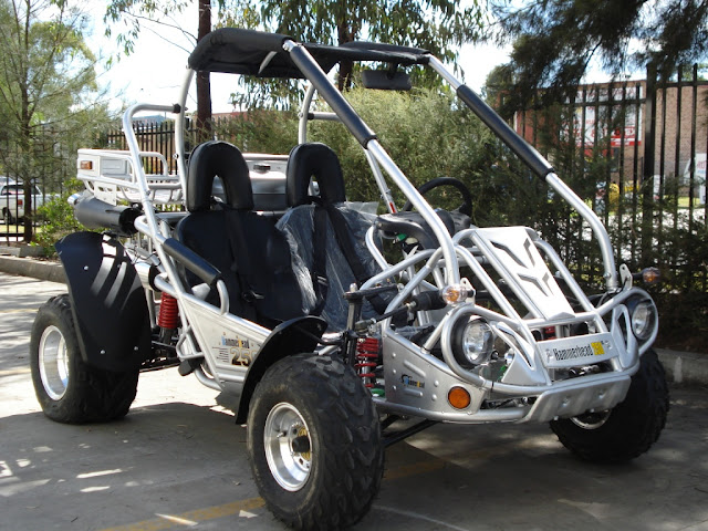 250cc SS Hammerhead Twister Supersport Go Cart Dune Buggy