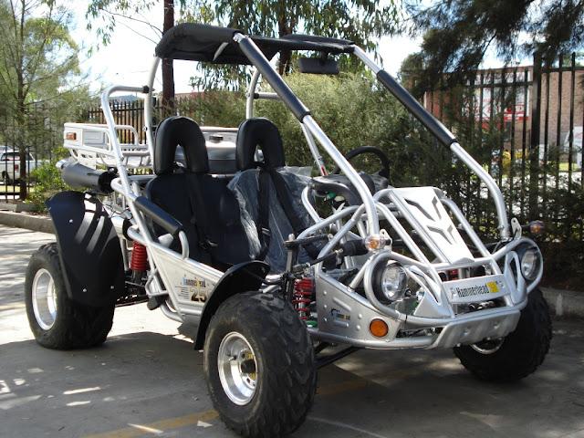 250cc SS Hammerhead Twister Supersport Go Cart Dune Buggy