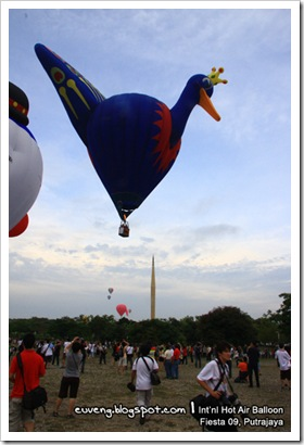 Balloon_Fiesta09_25