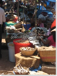 Goa salted fish