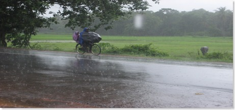 rainfall in Goa