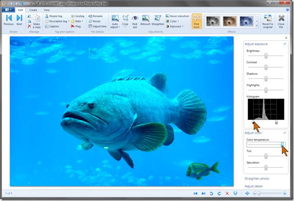 WLPG-grouper