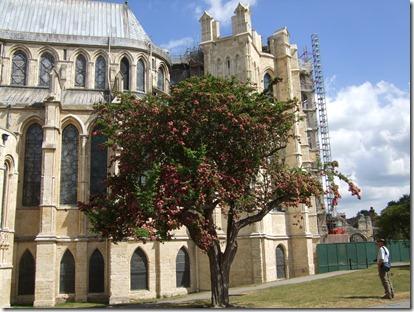 Canterbury 102