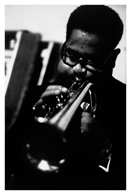 dizzy photo Roberto Polillo.jpg