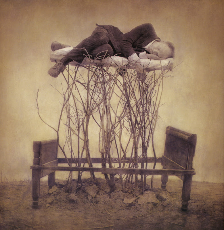 Robert and Shana ParkeHarrison  Forestbed From The Architect's Brother.jpg