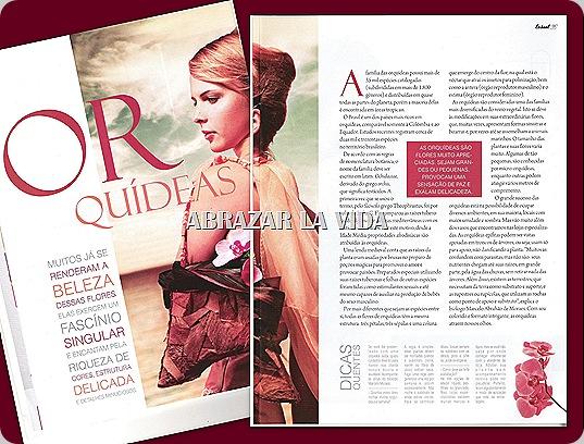 Orquídeas: Dicas e Curiosidades - Revista Casual Julho/2009