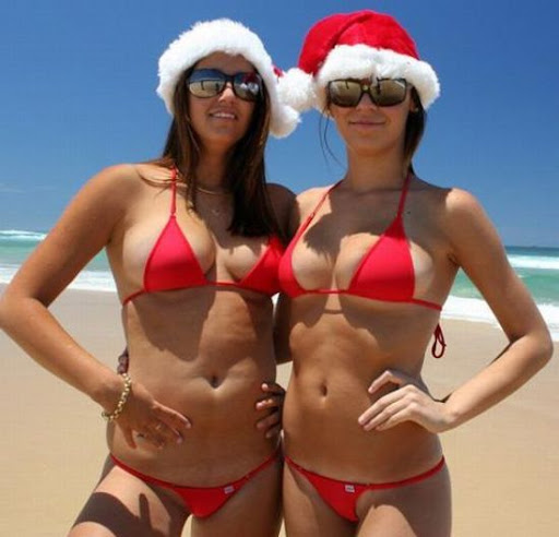 Filhote de Pombo deseja um Feliz Natal