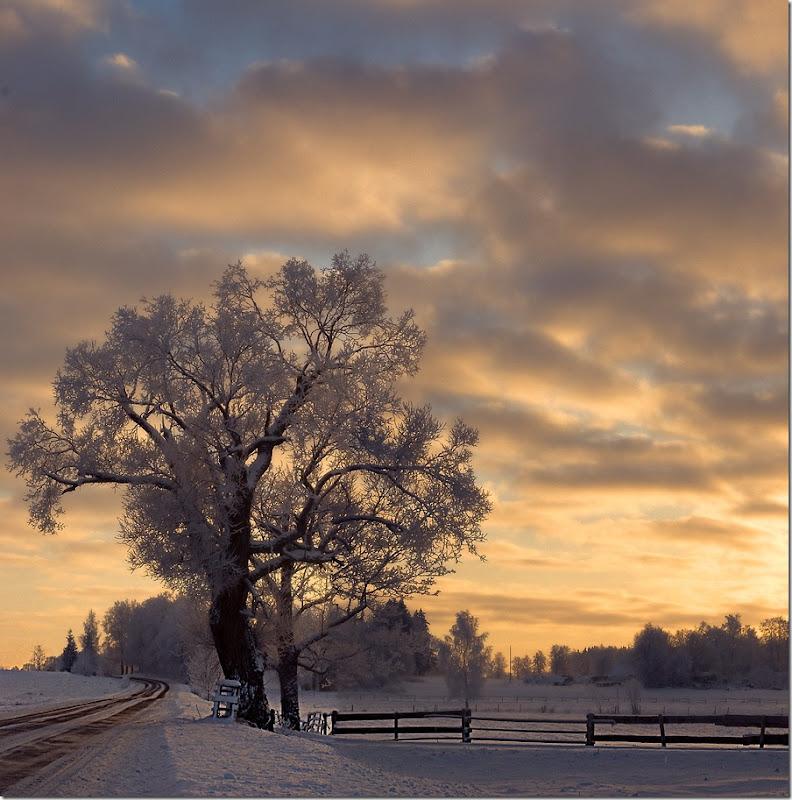 Winter by Suba1 post by artemis