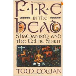 Fire In The Head Shamanism And The Celtic Spirit Cover