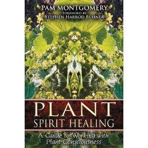Plant Spirit Healing A Guide To Working With Plant Consciousness Cover