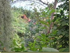 inside Eden