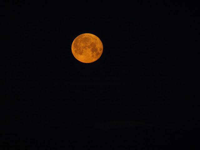 Coucher de lune, hier matin AG013417