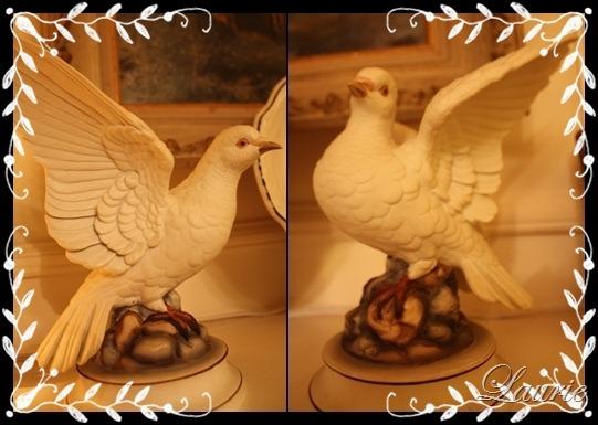 [doves[3].jpg]