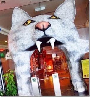 cat-museum-3