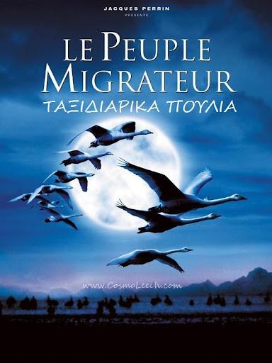 ΤΑΞΙΔΙΑΡΙΚΑ ΠΟΥΛΙΑ 2001 Taksidiarika Poulia Le Peuple Migrateur