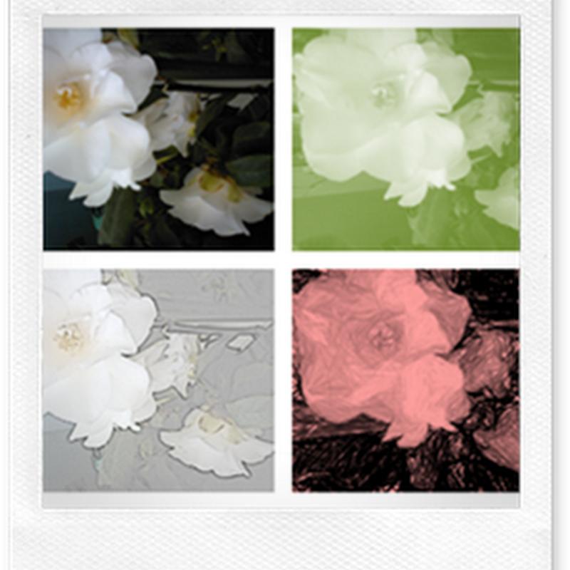 Immagini su misura con PHOTOSCAPE