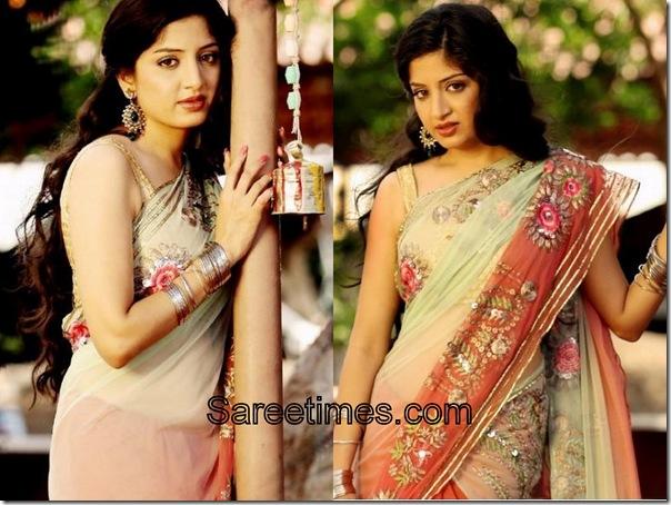 Poonam Kaur_Cream_Maroon_Designer_Saree