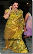 Designer_Wedding_Saree (13)
