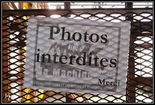 Une belle photo ? une bonne photo ? LA photo ?... Nantes-Oct08-097