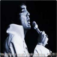 Elvis190