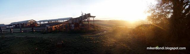 PC041067_stitch morning sun